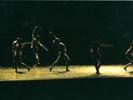"""""""Fruit Garden"""" (cor. Bruce Michelson) 2005"""