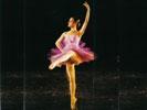 """""""Paquita Suite"""" 2002"""